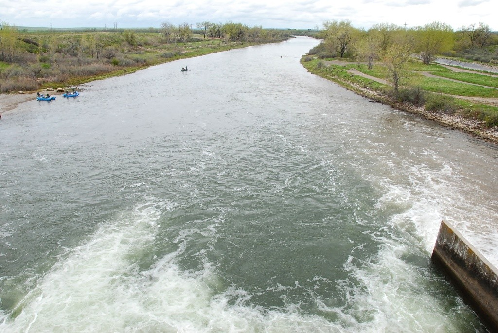 The Bighorn River looking downstream from Afterbay Dam. Notice the band of muddy water on the right.